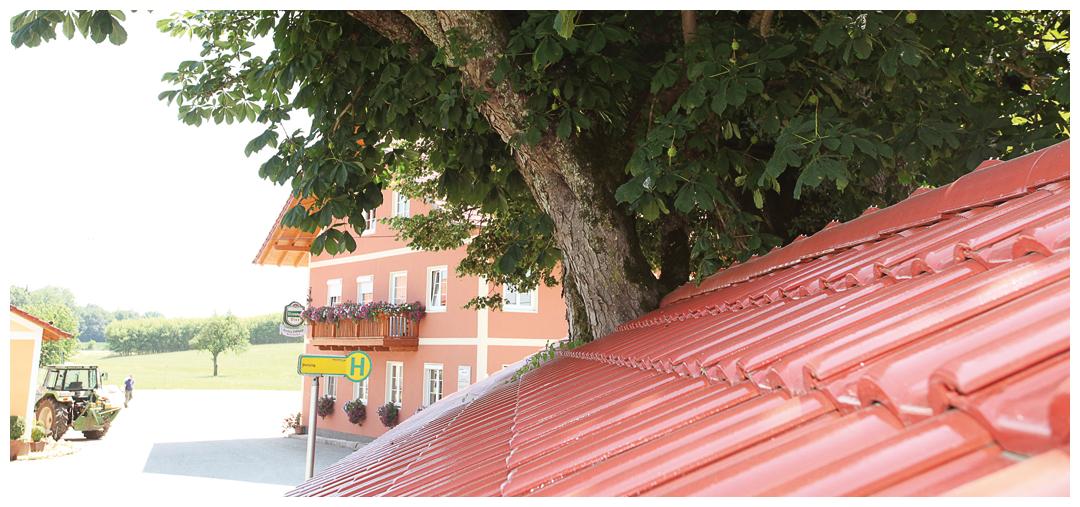 Sanierung und Umbau der Überdachung von Moser Holzbau